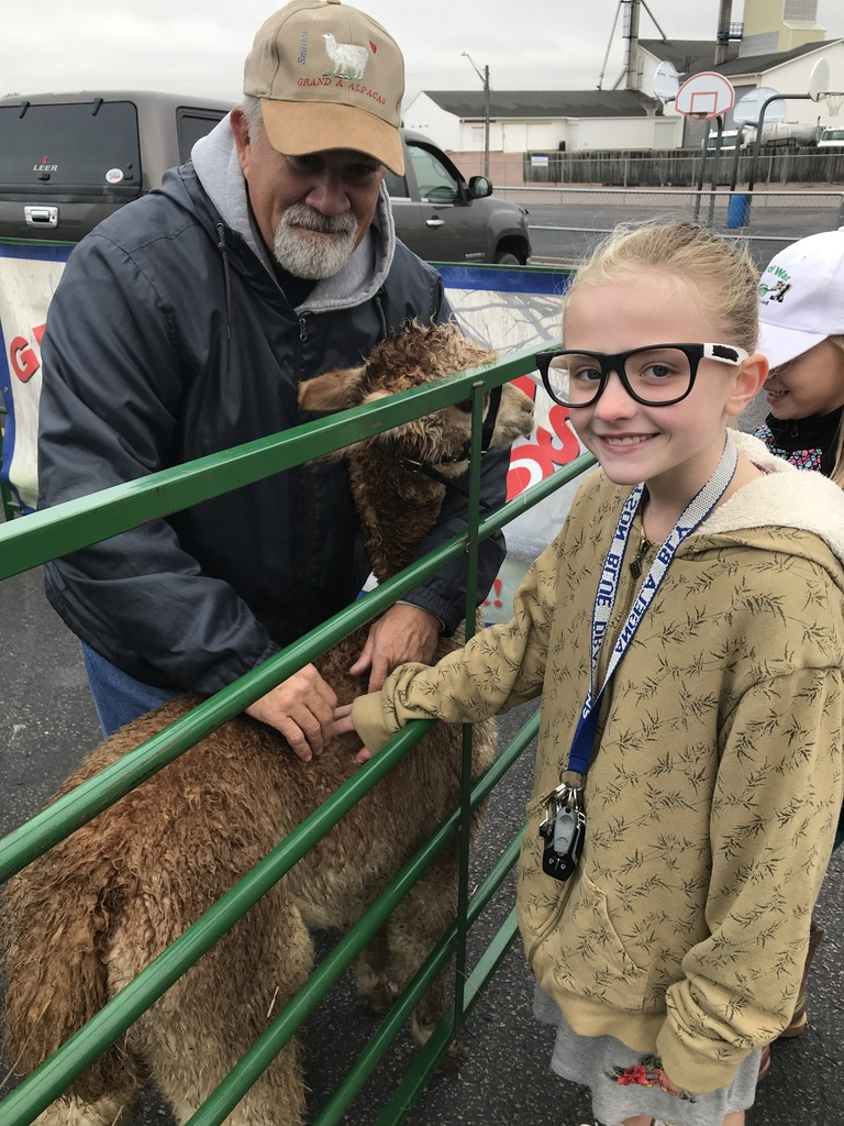 Ava petting the alpaca